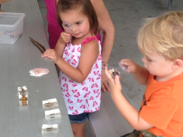 Preschool Math and Science Program @  Cape Fear Museum