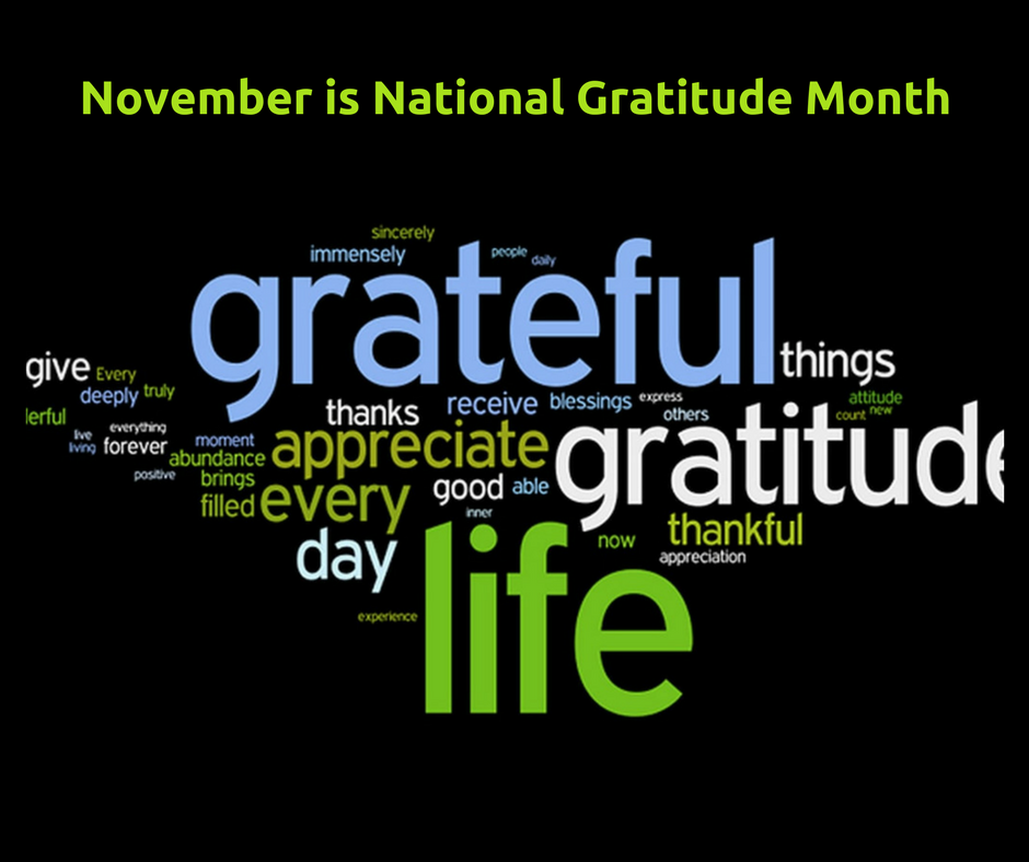 November Spotlight: National Gratitude Month