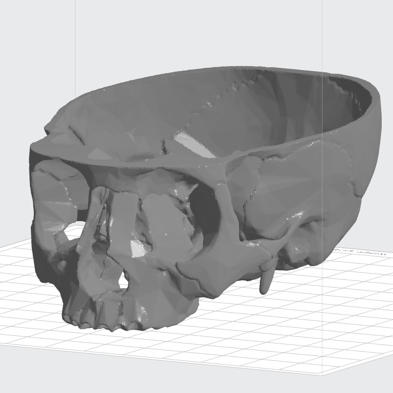 3D Printing from CT Scans