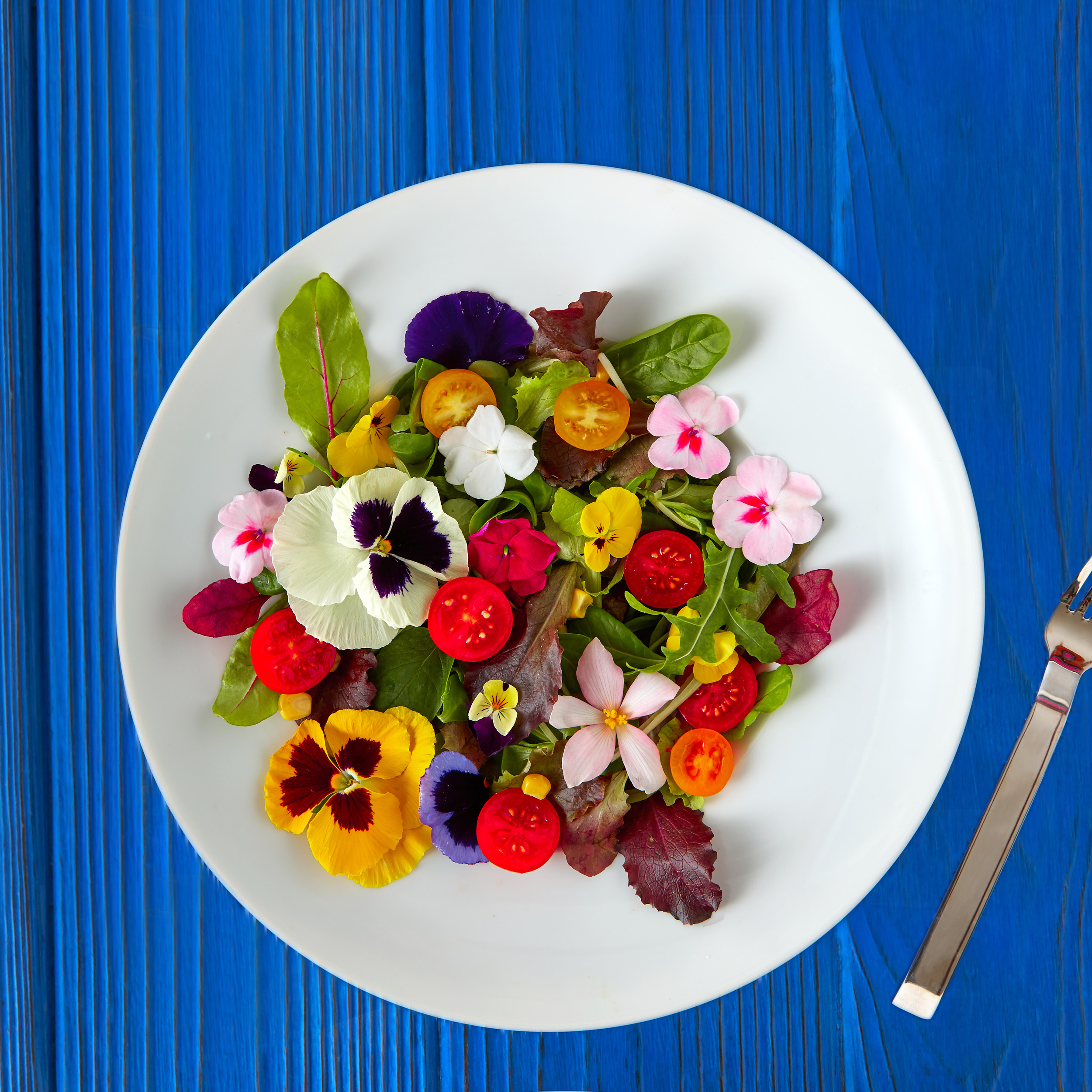 Edible Flowers with Marcy