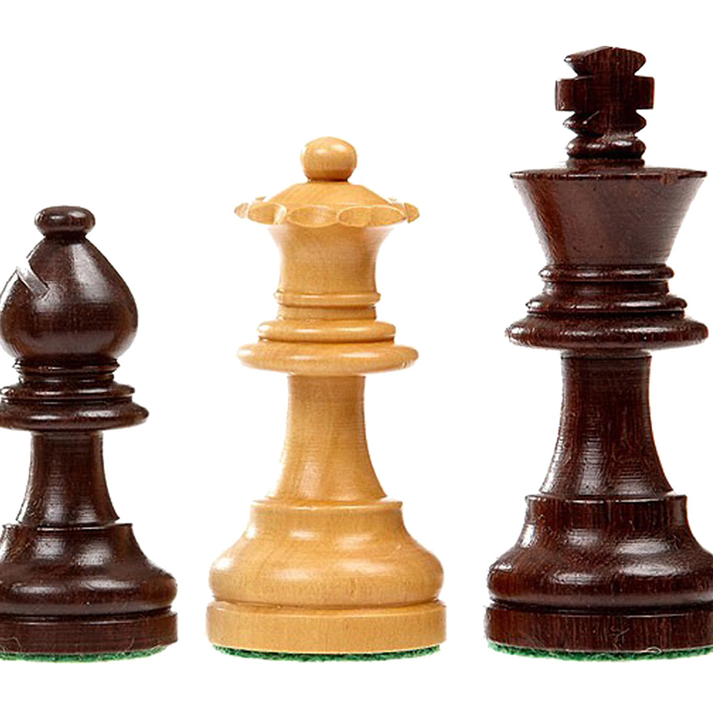 Learn & Play Chess