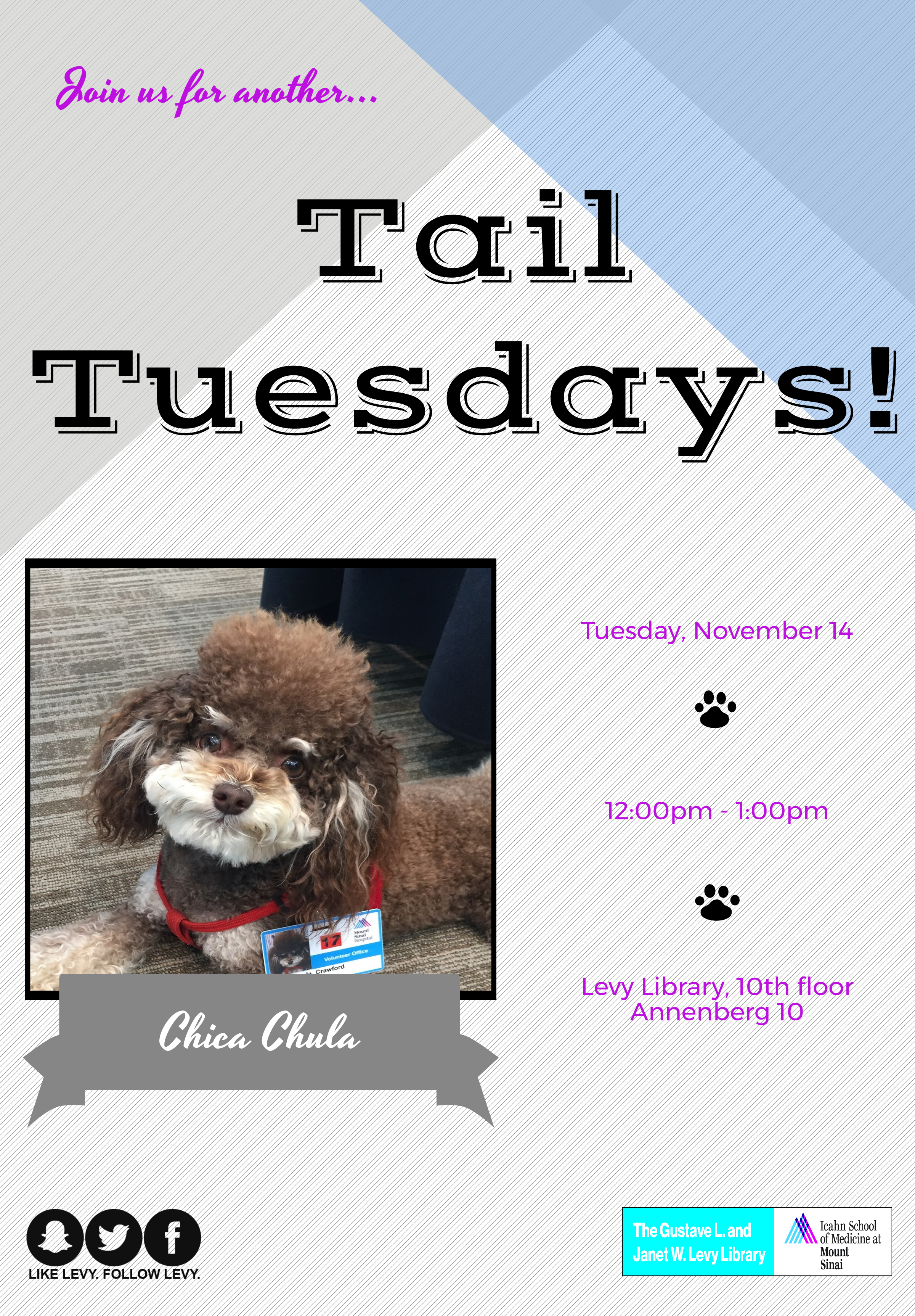 Tail Tuesdays Therapy Dog Visit
