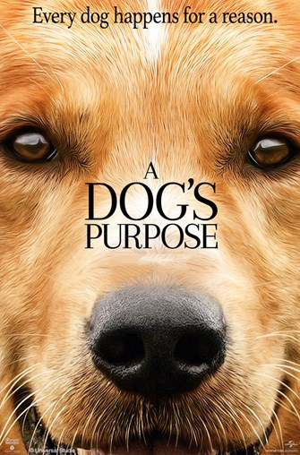 "Lunchtime Movies: ""A Dog's Purpose"""