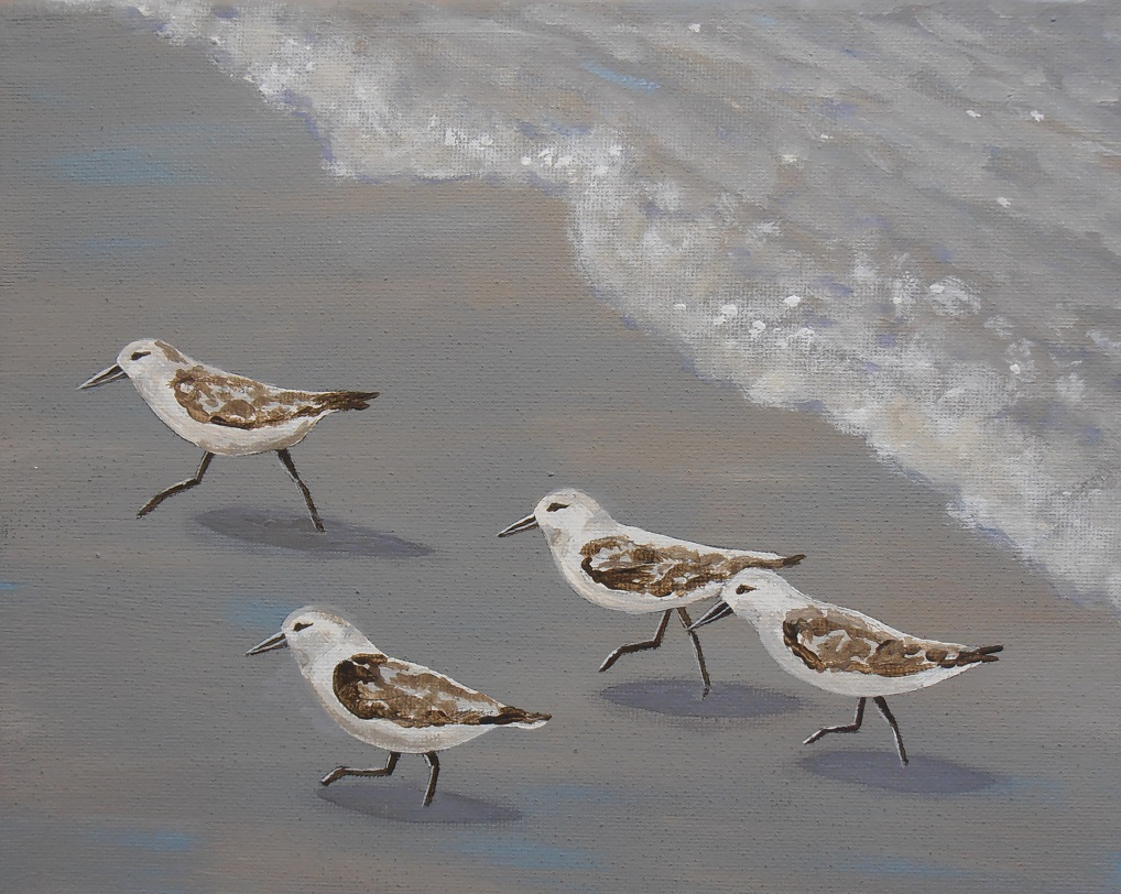 """Sprinting Sandpipers!"" Acrylic on Canvas"