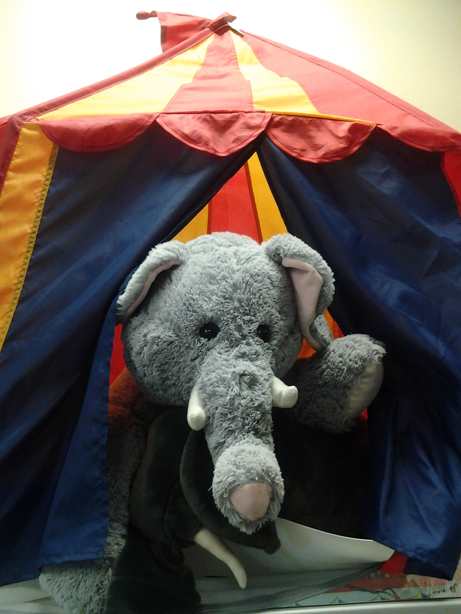 Stuffed Animal Sleepover Circus Camp
