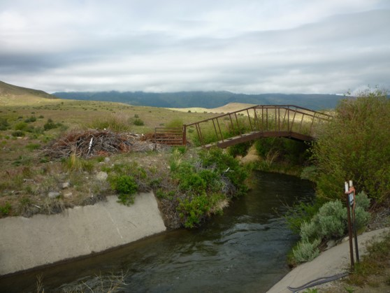 Truckee Meadows Irrigation Ditches