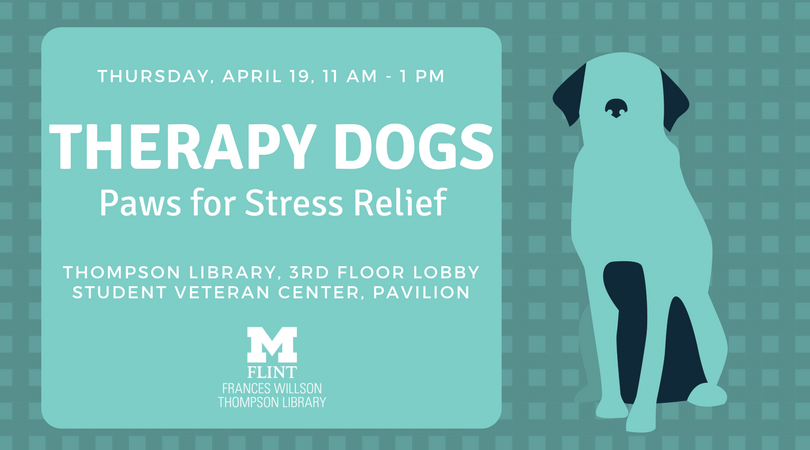 Therapy Dogs: Paws for Stress Relief
