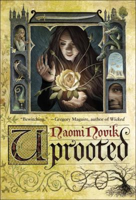 "Brown Bag Book Discussion: ""Uprooted"" by Naomi Novik"