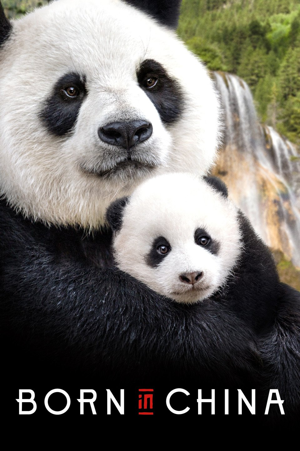 Earth Day Family Movie: Disneynature: BORN IN CHINA