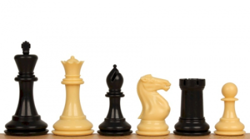 Learn Chess with a Champion! Beginner Class