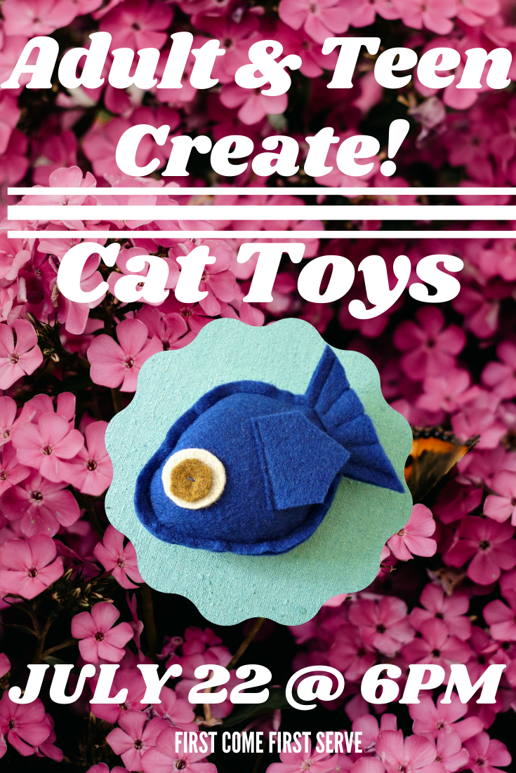 Teen and Adult Create! Cat Toy
