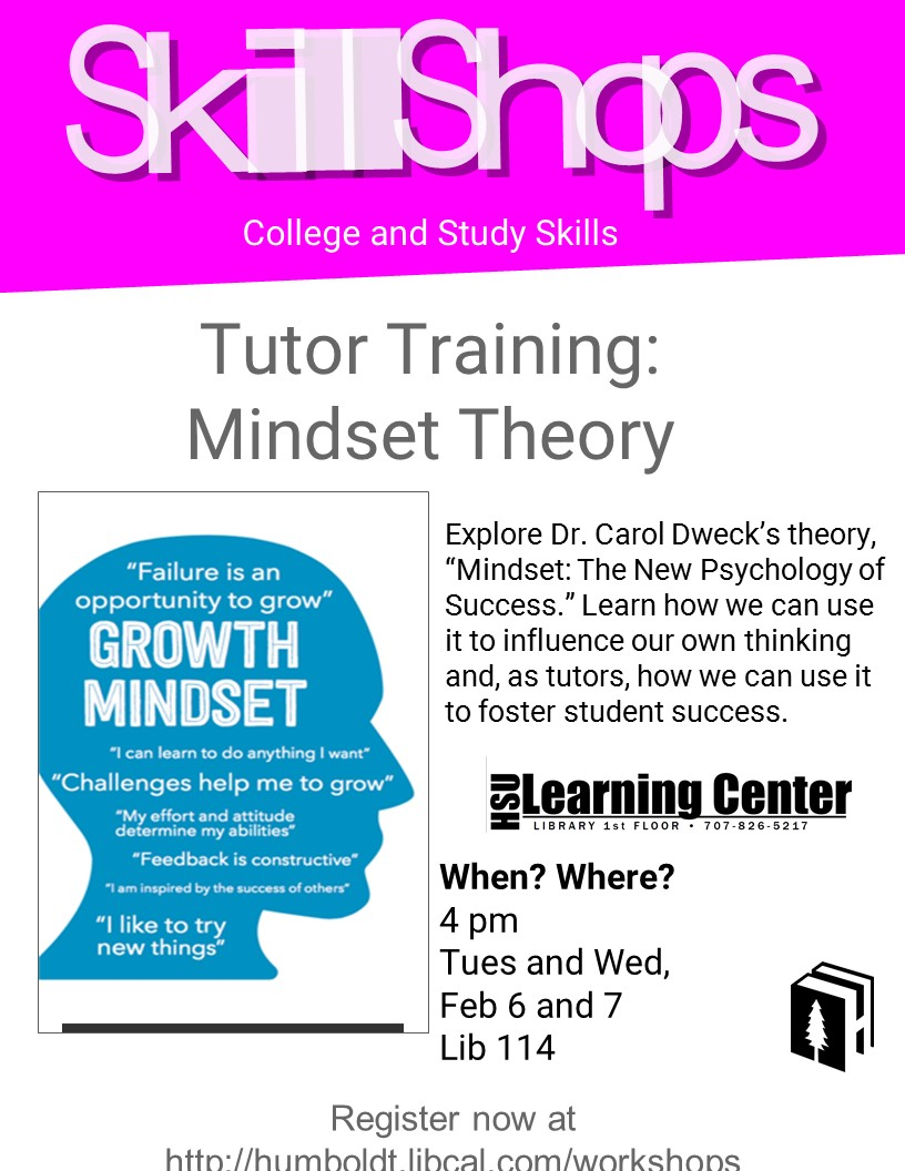 What is Mindset Theory?