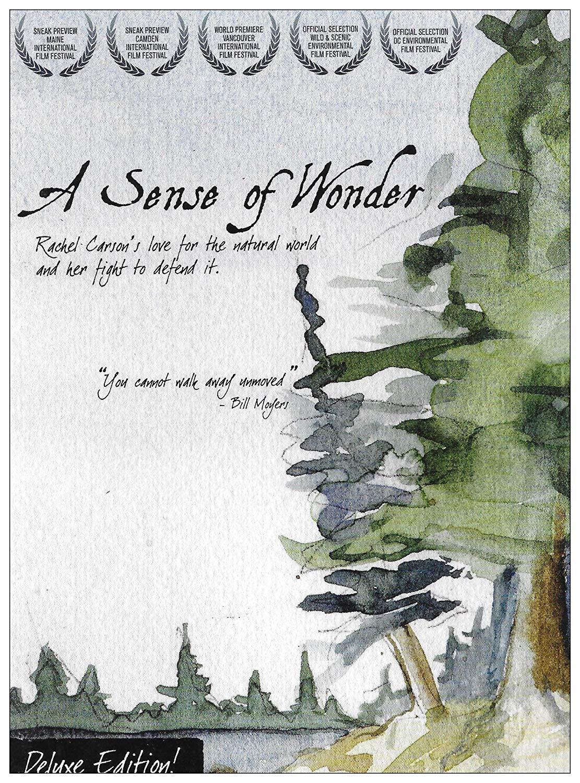 Film: A Sense of Wonder