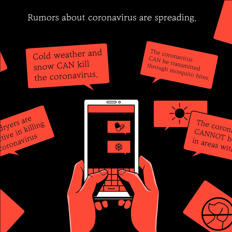 Calling Bullsh*t: Fact-checking COVID-19 Misinformation
