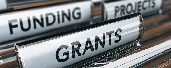 Planning for a Literacy Grant Application