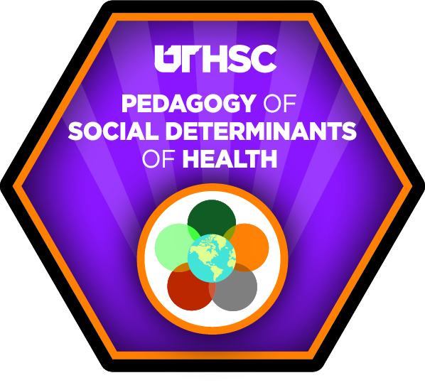 The Pedagogy of the Social Determinants of Health: Teaching Excellence Institute