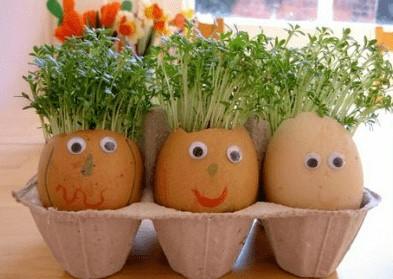 Saturday STEAM: Egg Heads