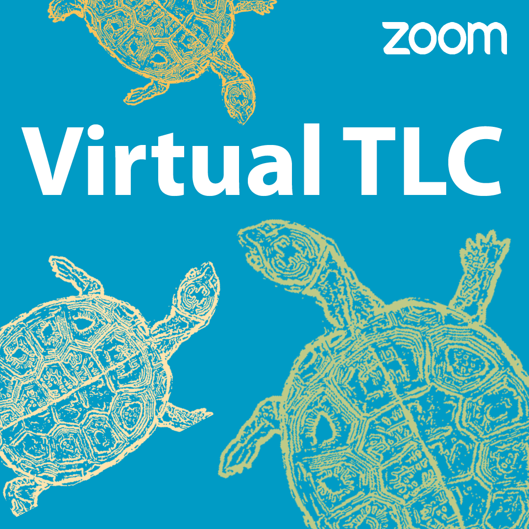 Virtual TLC: Shared Study Space