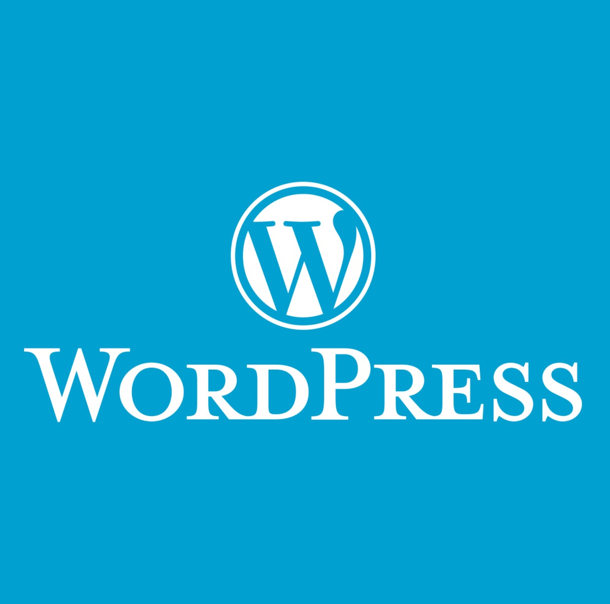 Wordpress for Digital Humanists: Part 1 - Setting Up Website Infrastructure