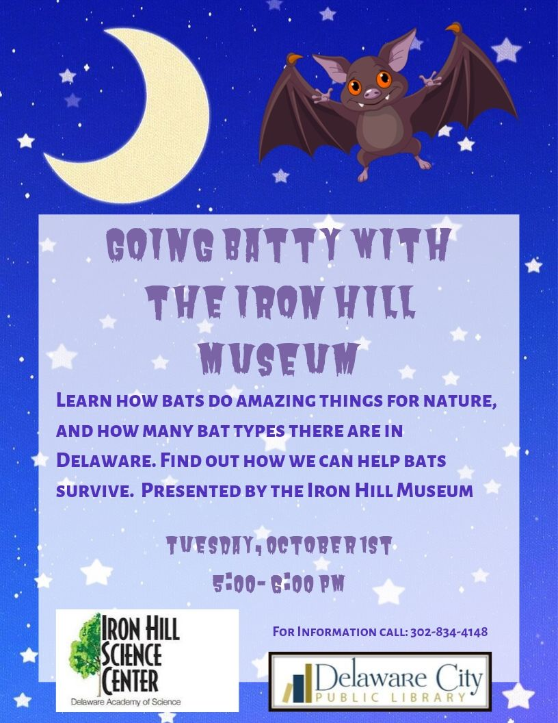 Going Batty with Iron Hill Museum