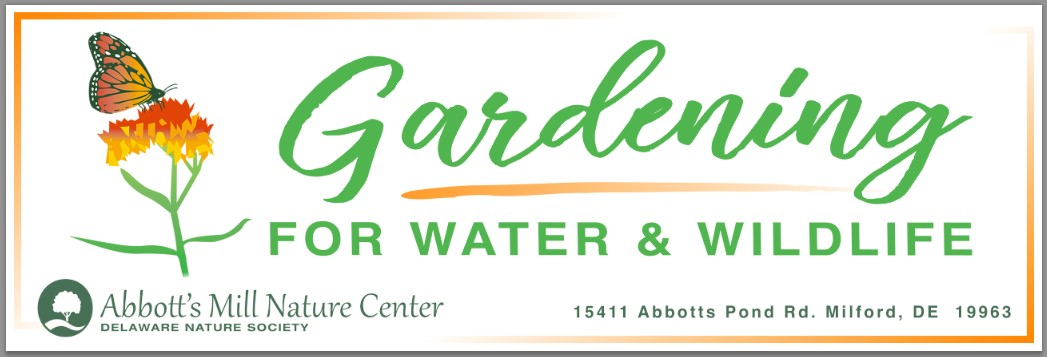 Gardening for Clean Water & Butterflies