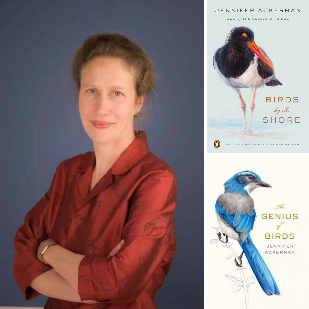 Jennifer Ackerman | Birds by the Shore - TO BE RESCHEDULED
