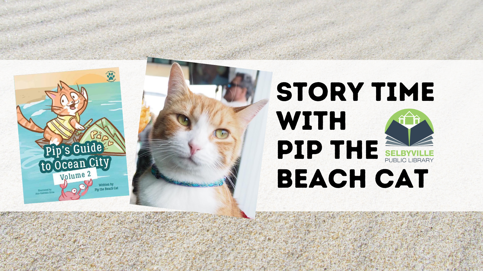 Story Time w/ Pip the Beach Cat!