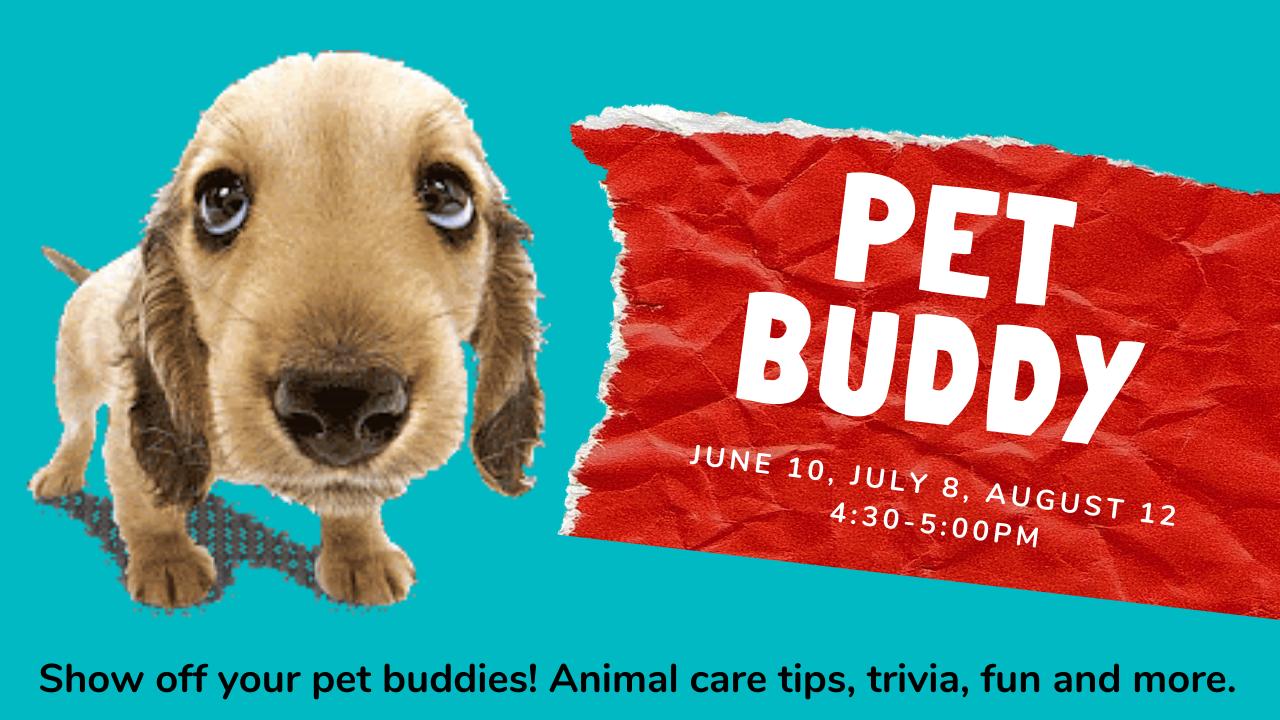 Pet Buddy