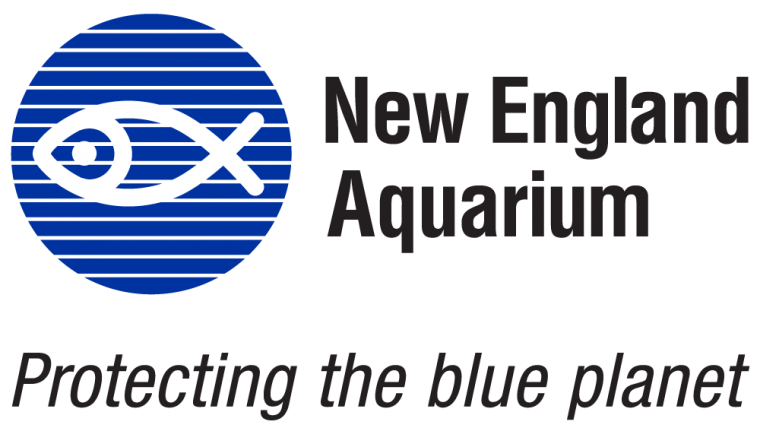Virtual Visit @ the NE Aquarium