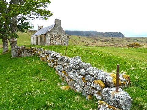 Humanities to Go: Ireland's Great Famine in Irish-American History