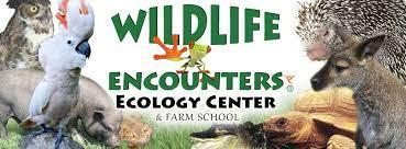 Wildlife Encounters! - SRP