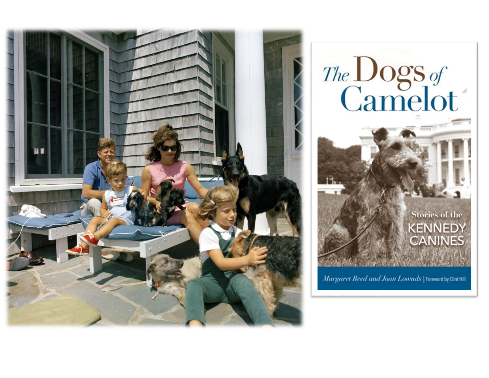 Author Talk: The Dogs of Camelot: Stories of the Kennedy Canines