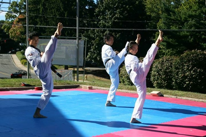 Taekwondo for Kids (Ages 4+)
