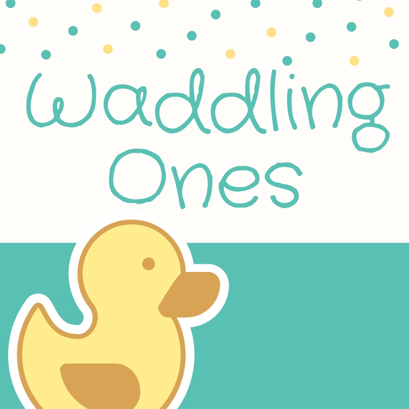 Waddling Ones (12-24 months, Register)