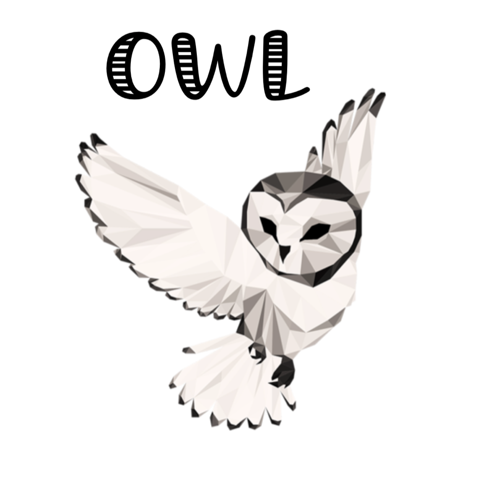 Cooking for One: On With Life (OWL) Meeting