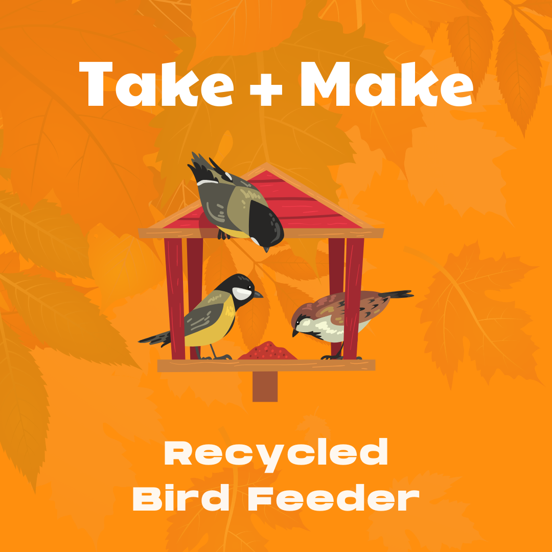Take + Make: Recycled Bird Feeder