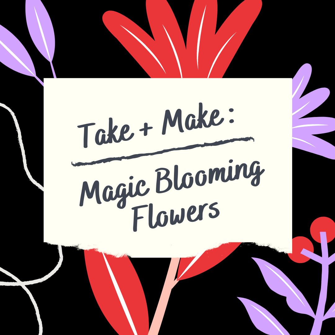 Take + Make: Magic Blooming Flowers (Grades K-6)