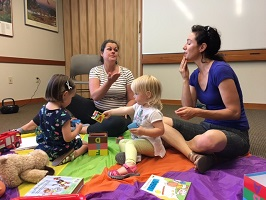 Hand to Heart Baby Sign Language (0-24 MOS)