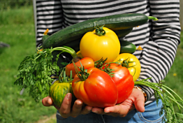 Best Veggies for the Rogue Valley