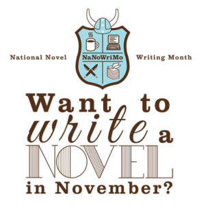 NaNoWriMo Come Write-In Session