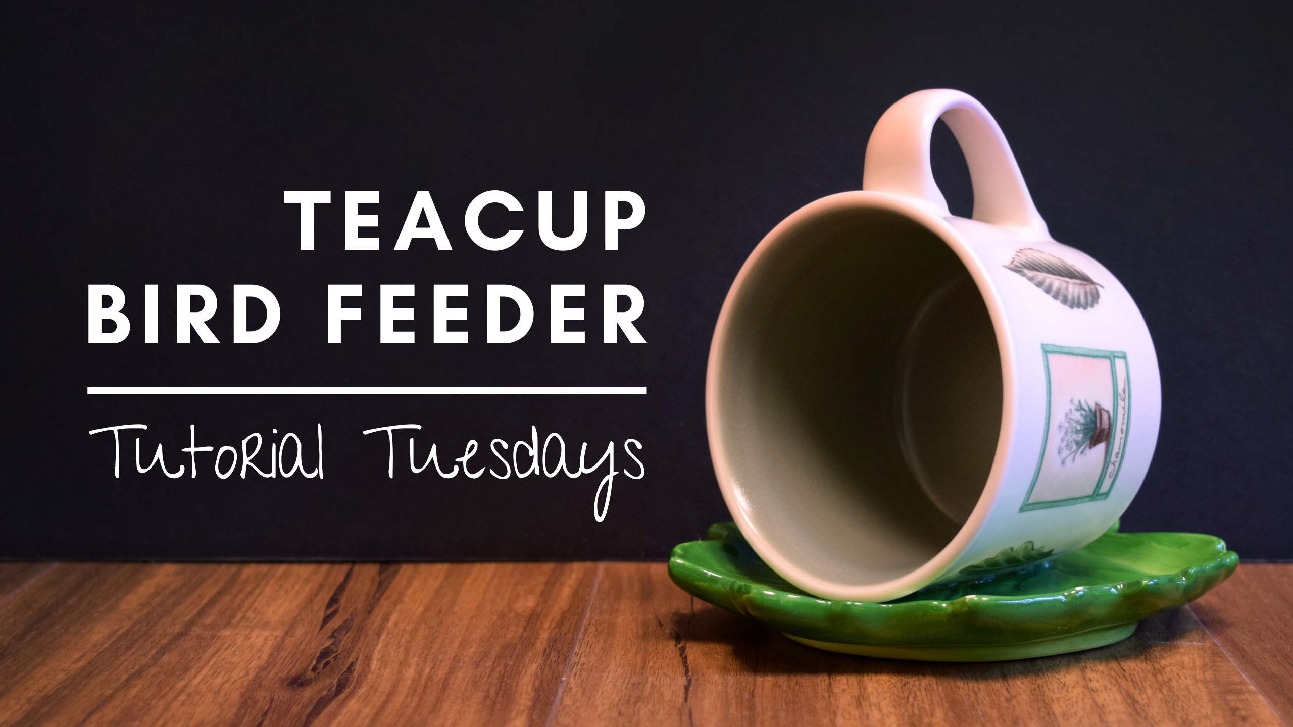 ONLINE - Tutorial Tuesday: Teacup Bird Feeder