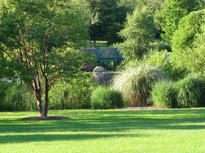 Webster Arboretum Tour