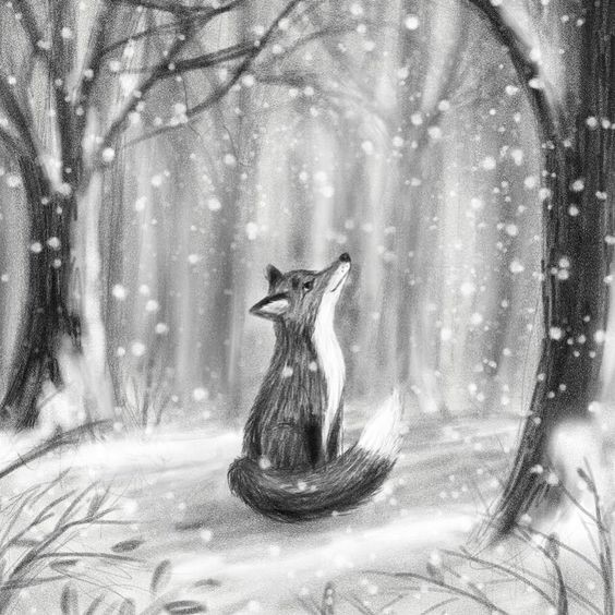 Autumn Art Series: Winter Fox Drawing