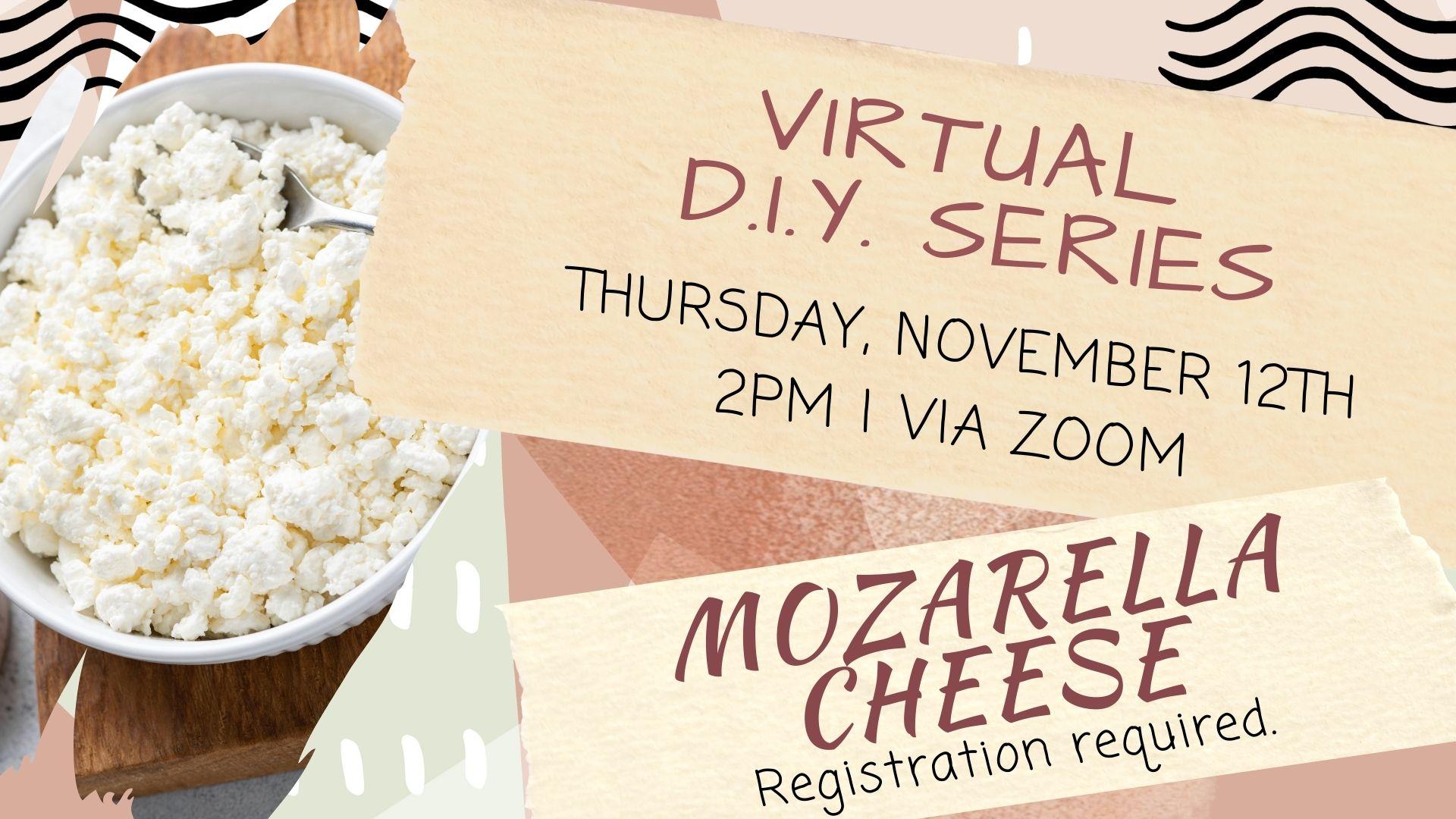 Virtual DIY Series: Make your Own Mozzarella