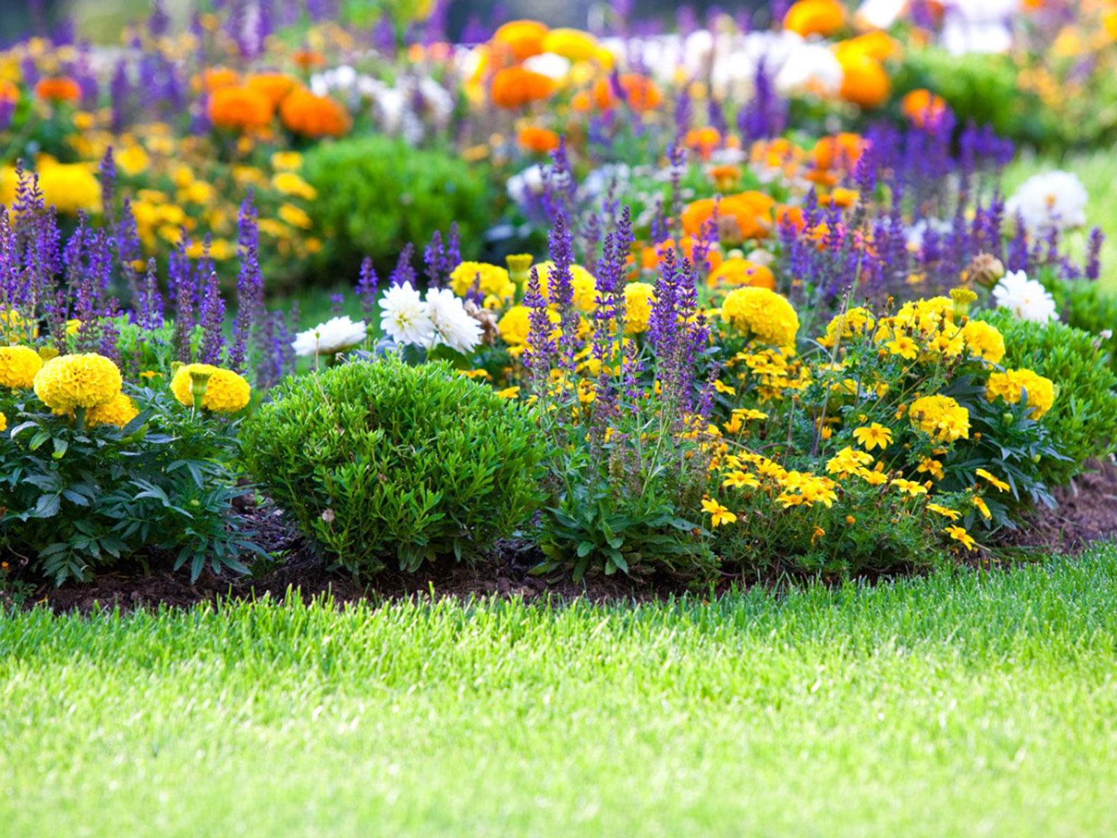 Junior Master Gardeners- Grades 3-5th