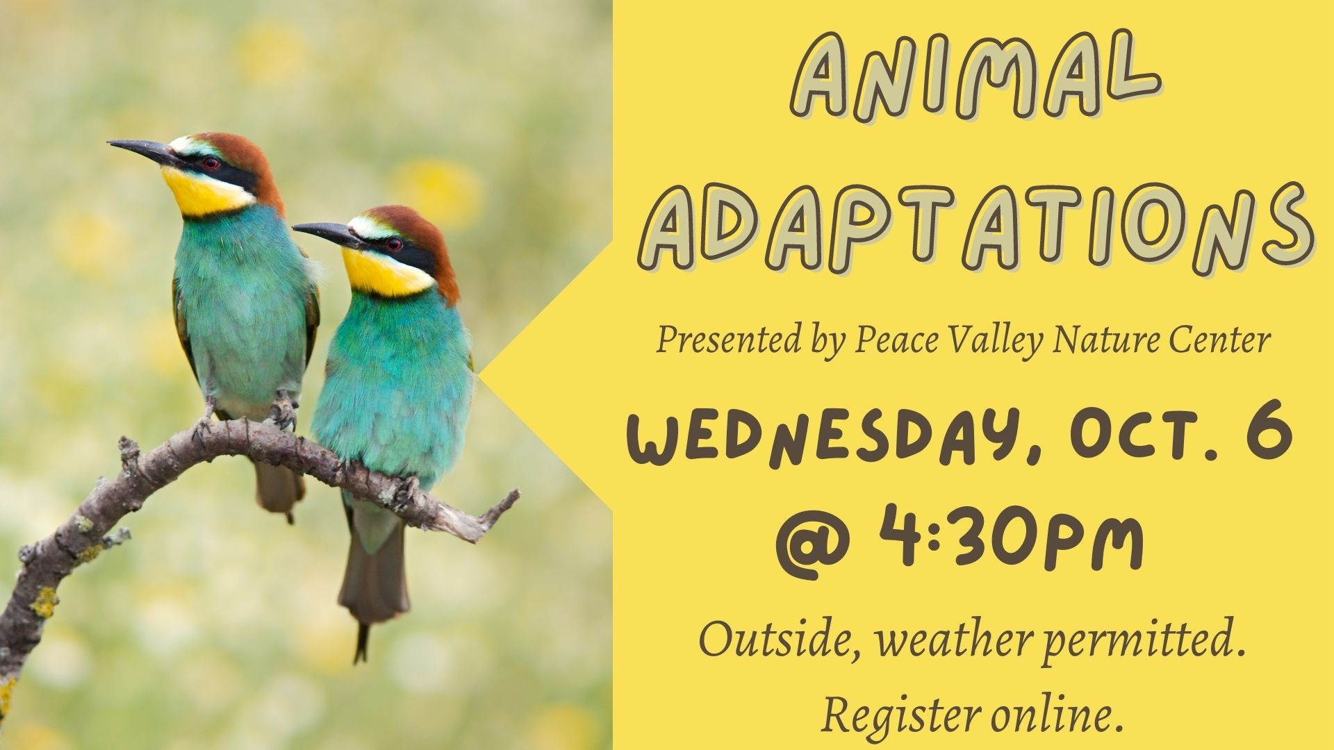 Peace Valley Nature Center: Animal Adaptations