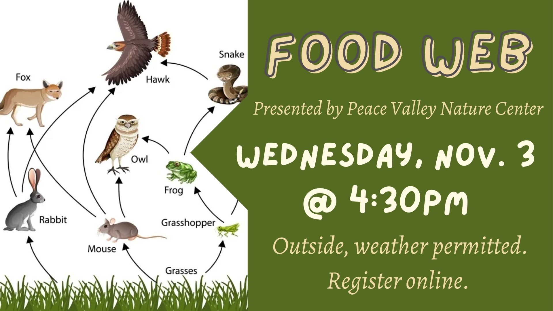 Peace Valley Nature Center: Food Web
