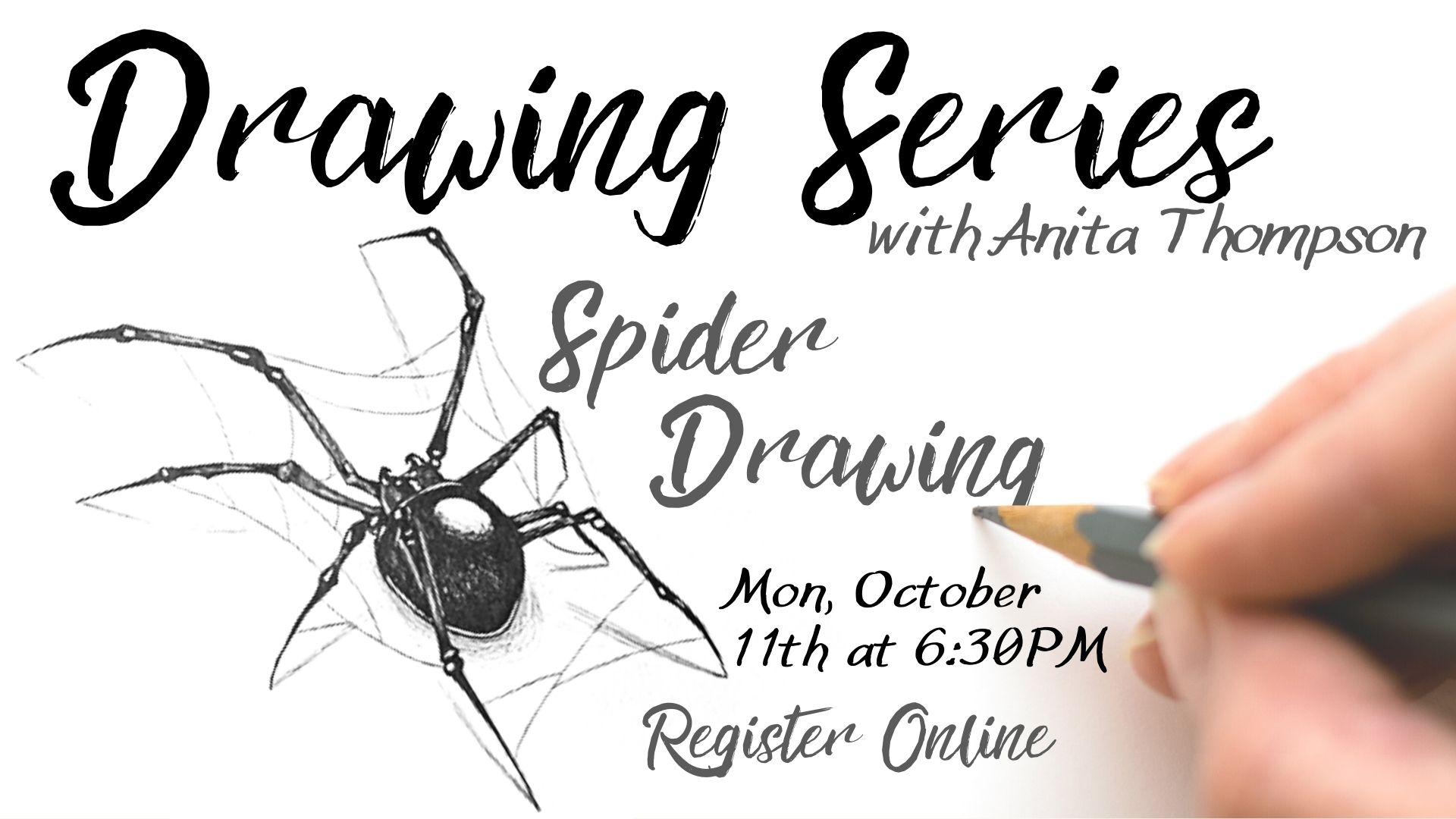 Drawing Series: Spider