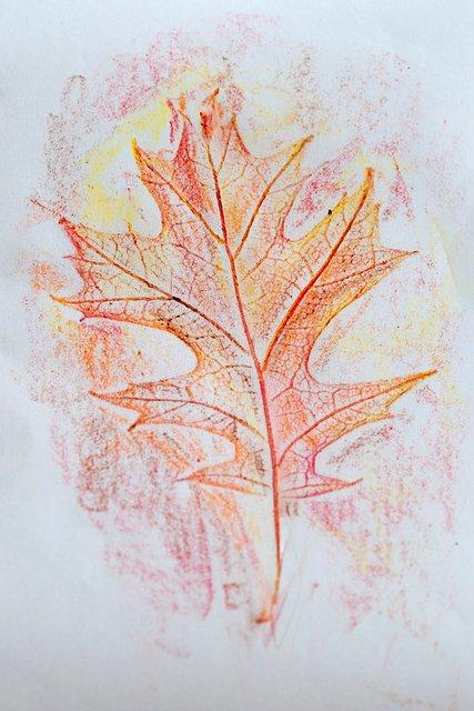 Leaf Rubbing Craft