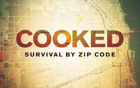 Cooked: Survival by Zip Code. Design and Environmental Health Discussion